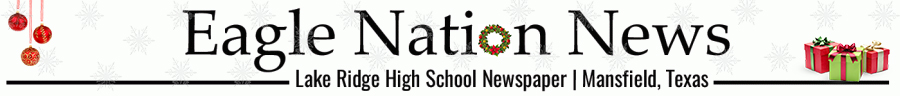 The Vision of Soaring Eagles at Lake Ridge High School