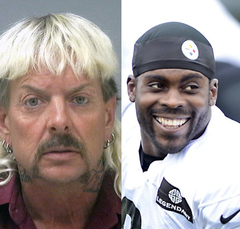Before there was a Joe Exotic, there was a Michael Vick. Both guilty of animal abuse, but are thought of differently.