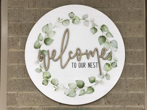 In order to better help with the emotional needs of their students, Lake Ridge Counselors created the NEST room.