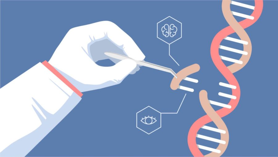 Genetic engineering is being newly introduced into the medical field, in hopes of it being a solution to various medical conditions.